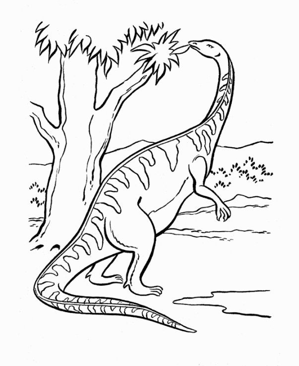 Dinosaurs Coloring Page | kids coloring | Pinterest