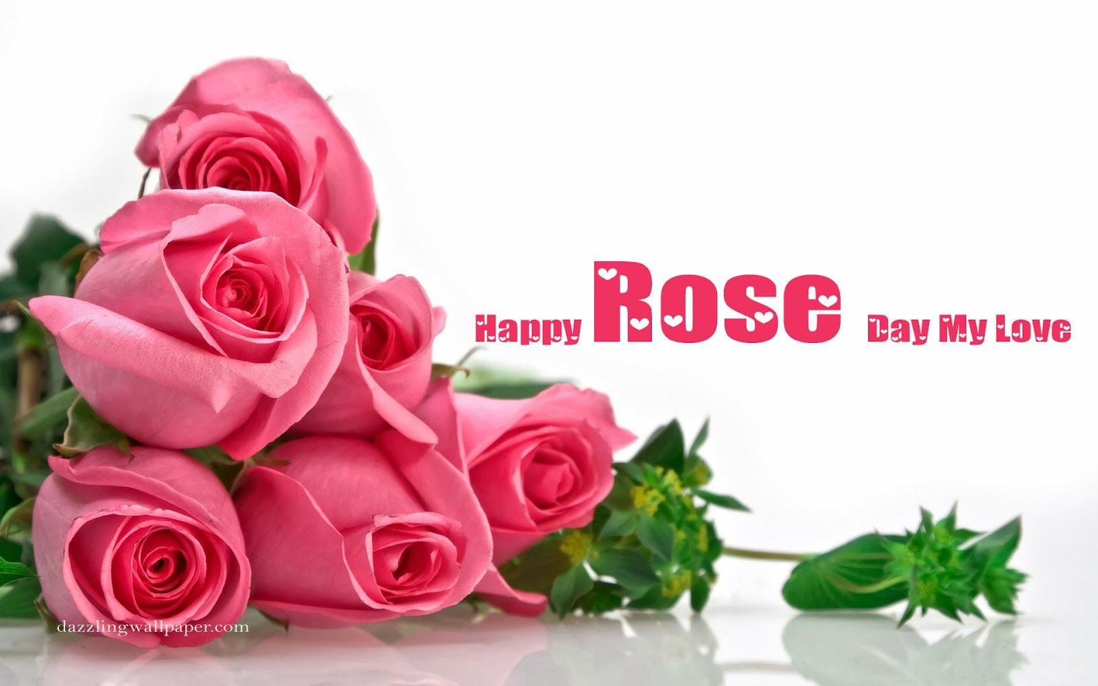 Rose Day Special Hd Wallpaper Pele Mele Wallpaper Wallpaper