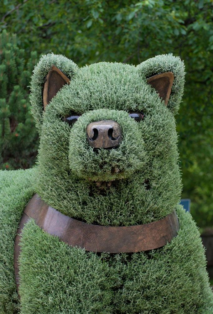 Incredible Plant Sculptures At The Montreal Botanical Garden