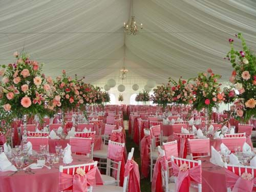 This is quite the room Pink Weddings Pinterest Wedding