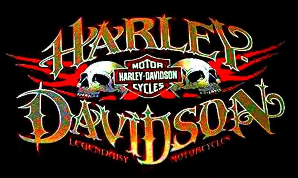 Skull Art  Harley Davidson