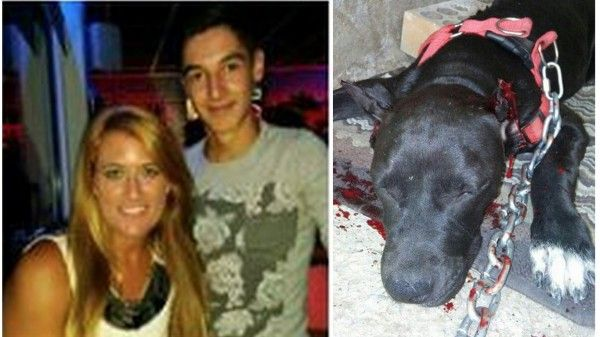 BRAINLESS teen cuts off his dog's ears with scissors because they were too big! SIGN NOW