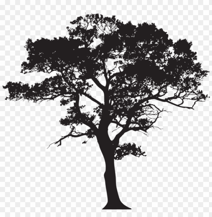Dead Tree Png