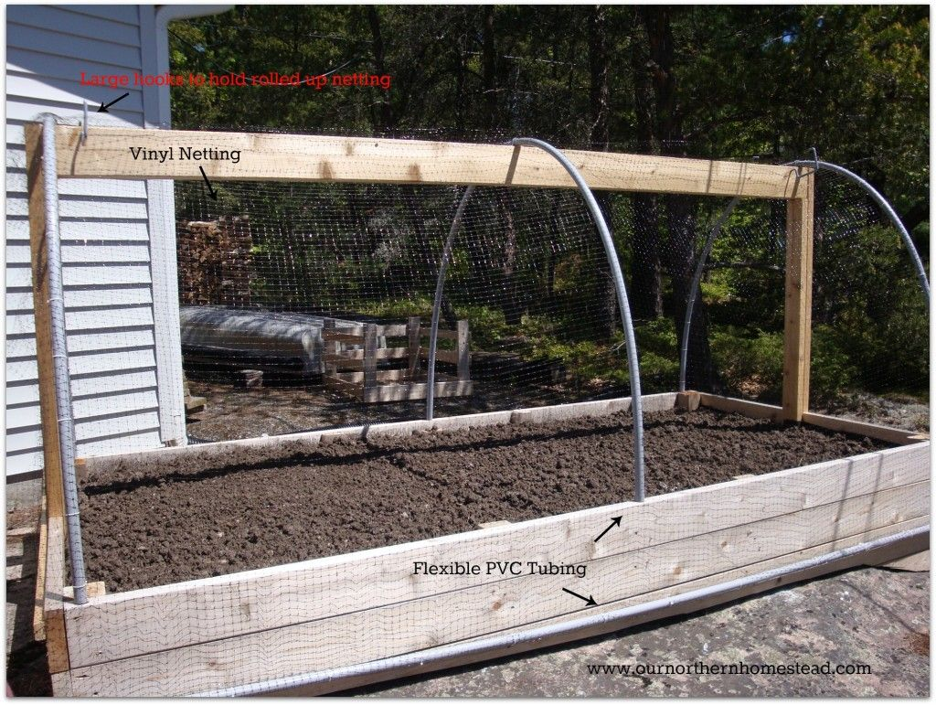 Deer proofing your 4x8 garden Raised garden beds, Deer