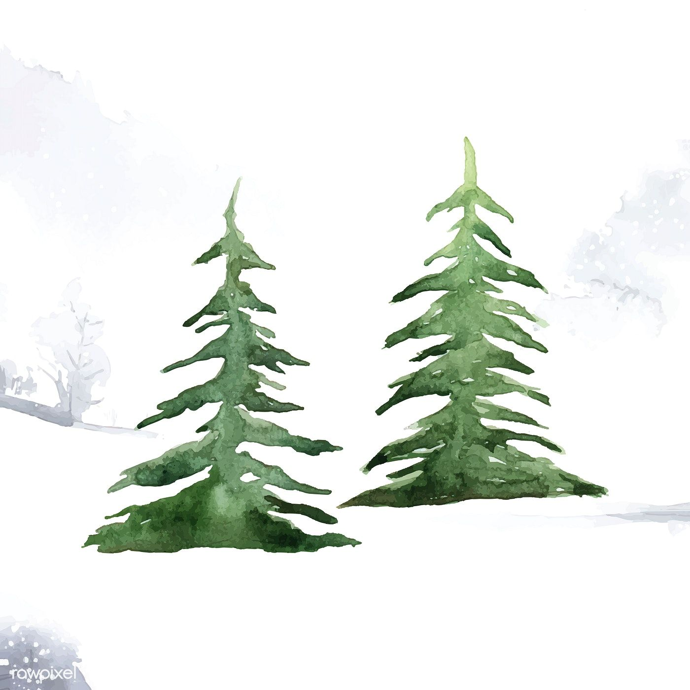 Pine Trees Painted By Watercolor Vector Free Image By Rawpixel Com