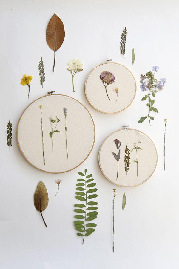 DIY flores secas en bastidor para decorar DIY framed dry flowers for - flores secas