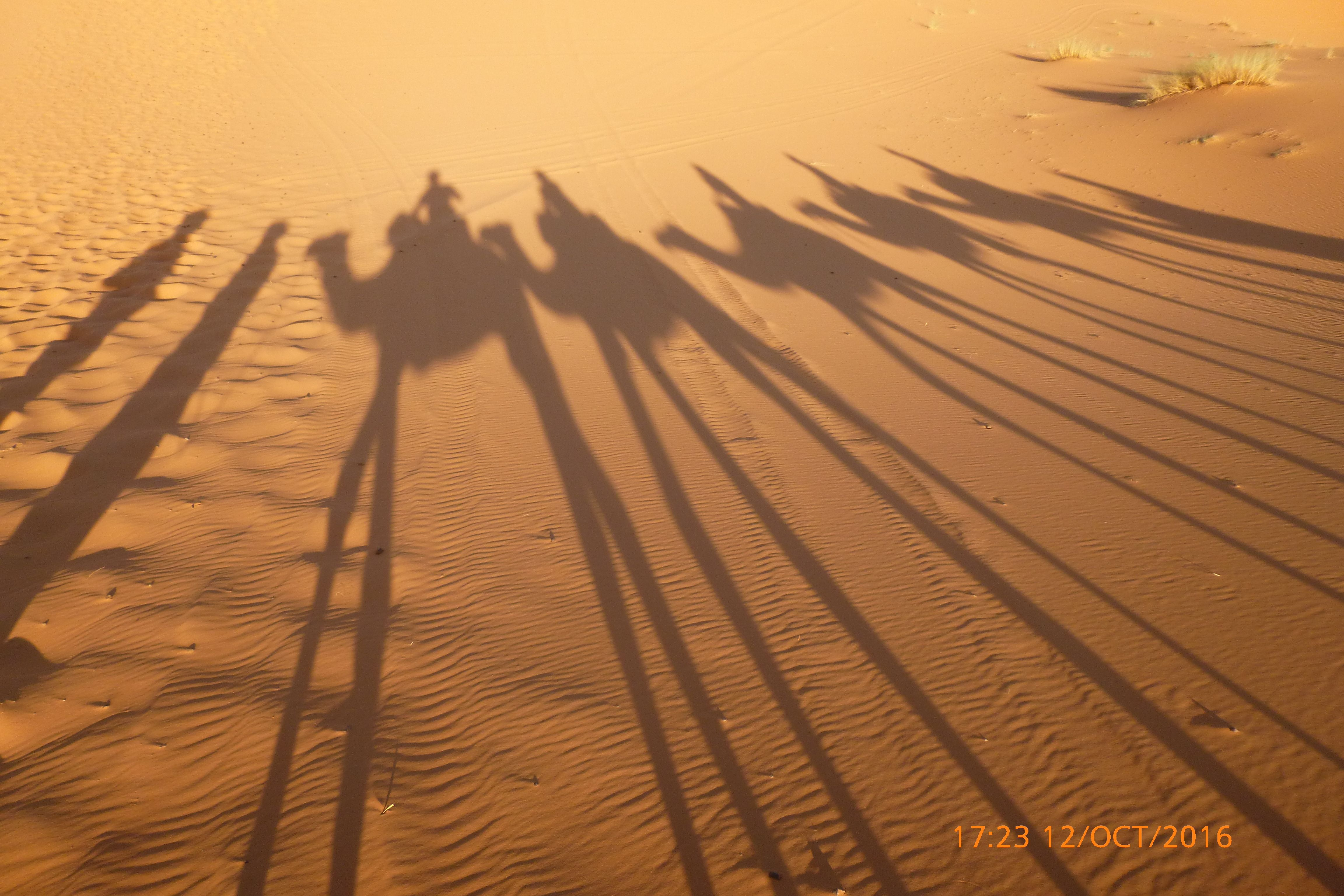 Caravana en el desierto de Merzouga, Marruecos