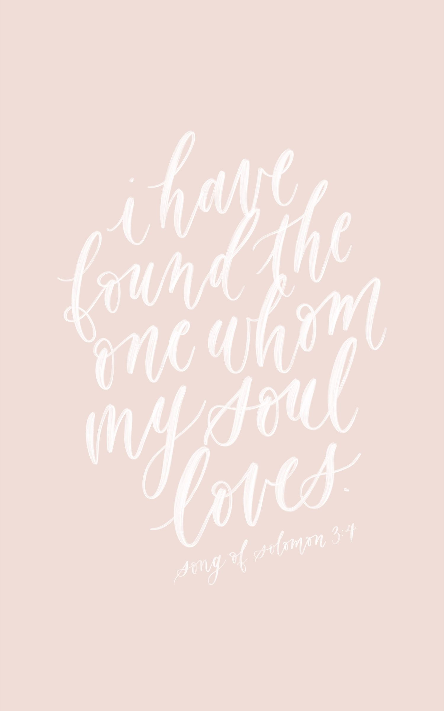 Song Of Solomon 3 4 Song Of Songs I Have Found The One Bible
