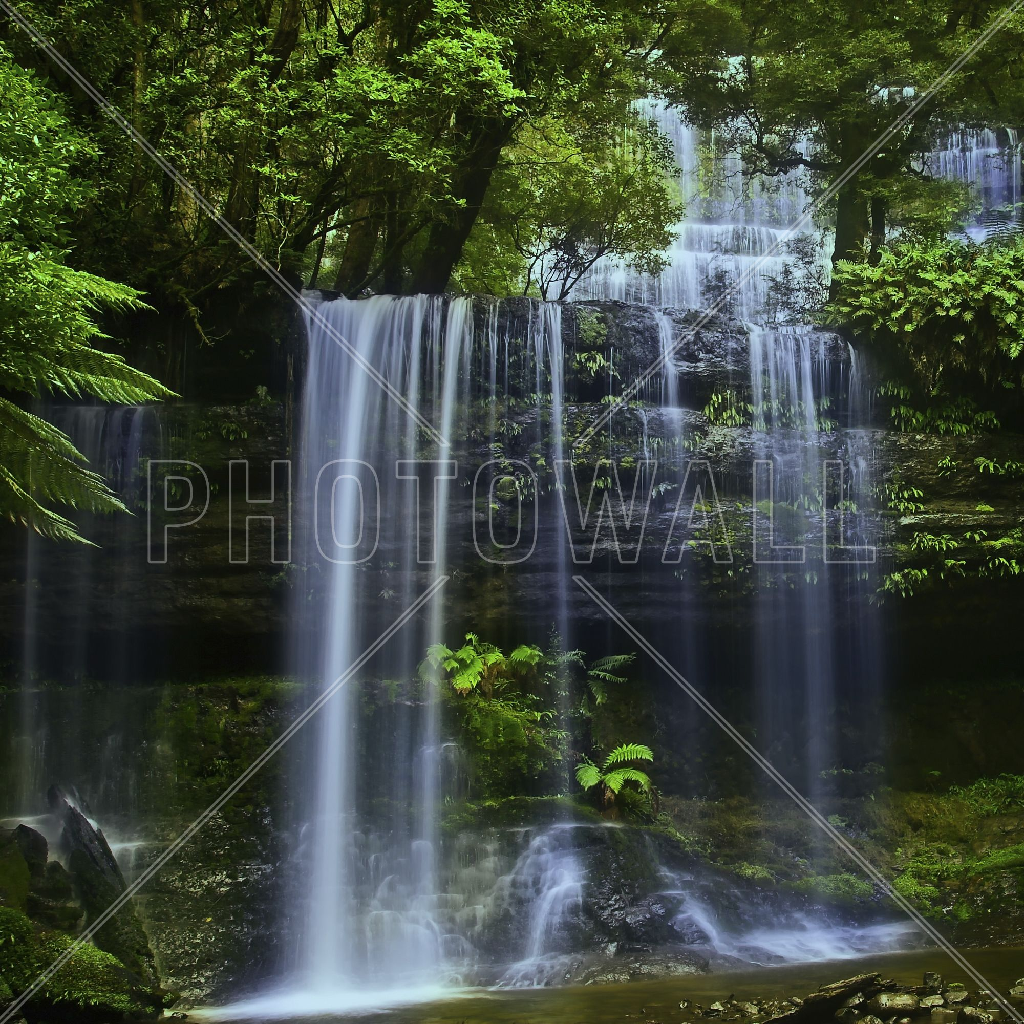 Tasmania Waterfall Wall Mural u0026 Photo