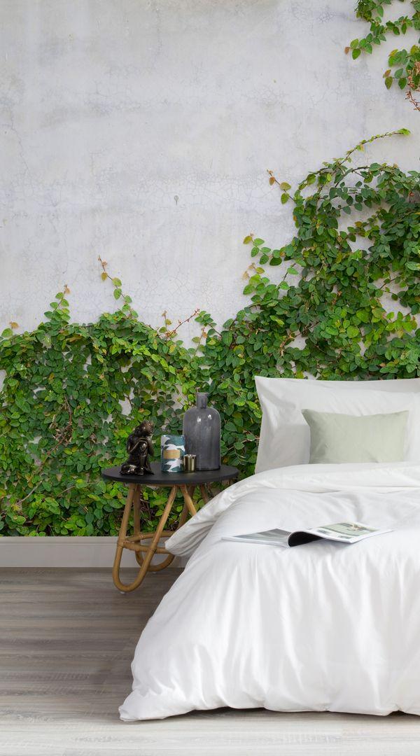 papier peint fresque mur de lierre tapis muraux les capteurs et la lutte. Black Bedroom Furniture Sets. Home Design Ideas