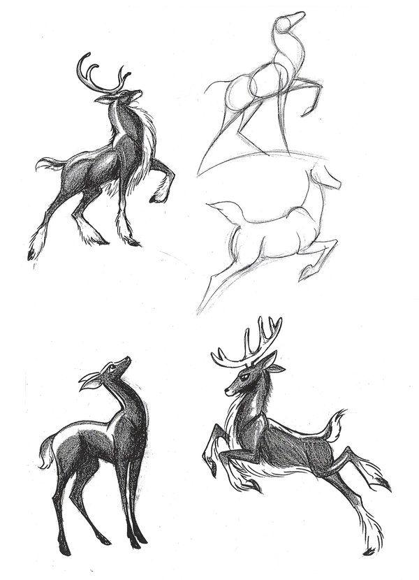 Dessiner un cerf ou une biche animaux divers comment dessiner dessin et croquis animaux - Dessiner un cerf ...