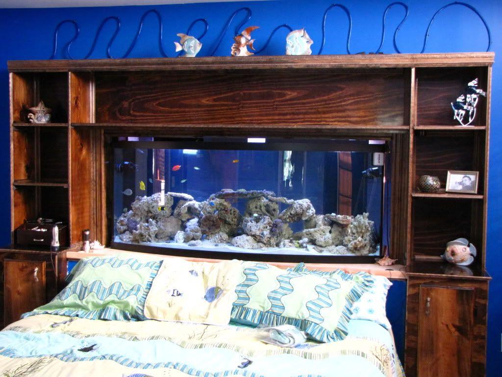 Aquarium Bed Part - 16: Bedroom: Amazing Aquarium Bed With Built In Shelves That Can Be .