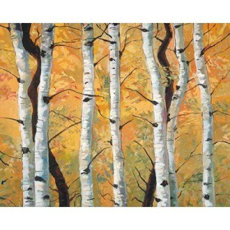 Golden Aspens Canvas Art - Miro Kenarov (24 x 30)