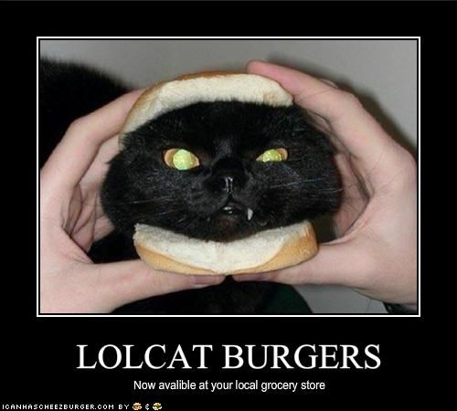 It's good to know I'm not the only one who has thought cat heads are the size and shape of a hamburger. lol
