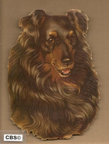 Hondenkop poezieplaatjes 5031