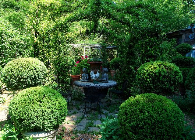 Beautiful garden with boxwood planters