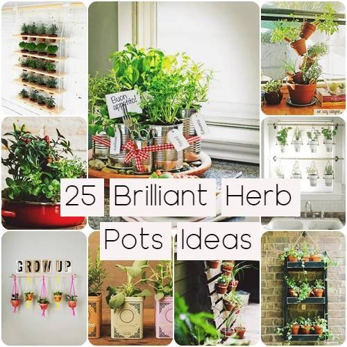 Get rid of the lack of space. Here are 25 brilliant Herb Pots Ideas that will help you to create an herb garden in a small space.