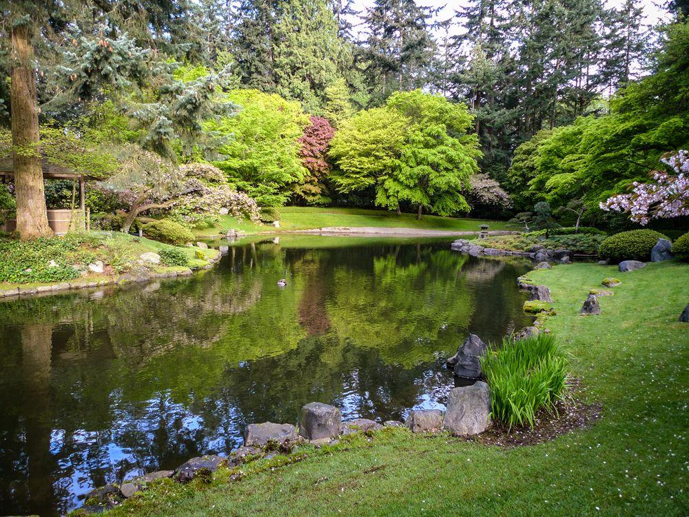Nitobe Memorial Garden - summer. Vancouver, BC #Vancouver #UBC #VancouverGardens #exploreBC #veryVancouver #gardens #JapaneseGarden #exploreBCgardens ...