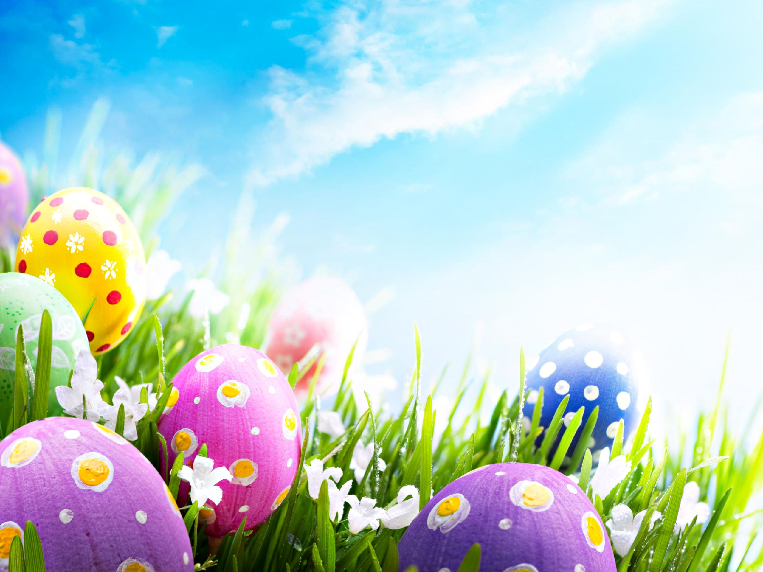 happy easter wallpaper Happy easter wallpaper, Easter