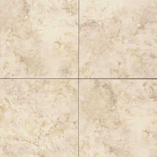 18x18 Tile In Small Bathroom: Master Bath = Daltile BC02 18x18 Main Floor, 2x2 Shower