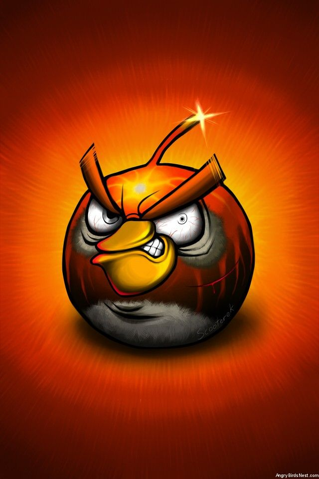 Angry Birds Bomb Bird After Battle IPhone Background By Scooterek