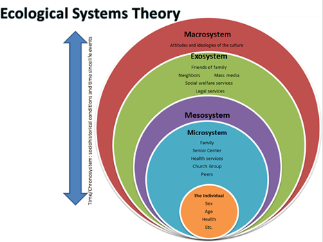 Found On Bing From Shannondwyer Wordpress Com Ecological Systems Theory Systems Theory Ecological Systems
