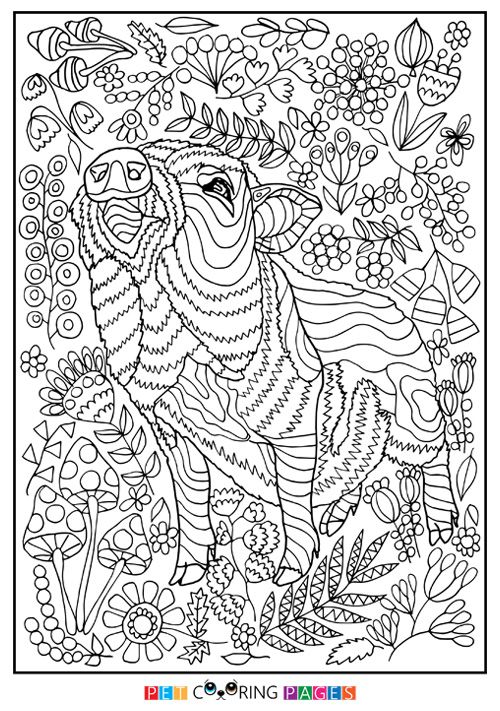 Free printable Göttingen Minipig coloring page \
