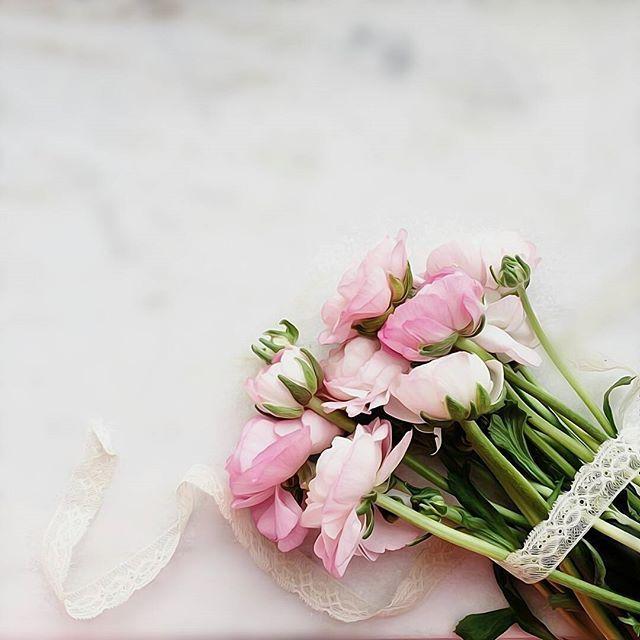 لرؤية التصميم على الخلفية يوجد في حساب Noory Vip 3 Noory Vip 3 Noory Vip 3 خامات خلفيات للتصميم Flower Backgrounds Aesthetic Roses Flower Frame