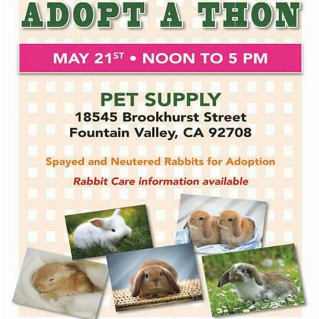Adoption Event tomorrow in #FountainValley #california  Please share! #buns #bunnies #rabbits #babyanimals #adoptdontshop by animalrightsofig