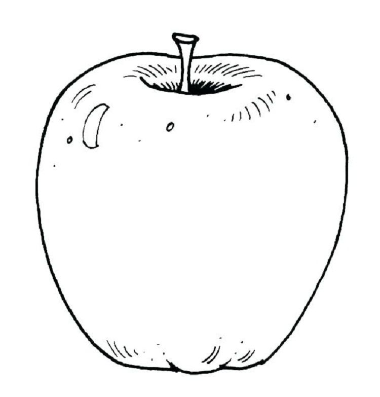 Realistic Apple Coloring Pages Apple Coloring Pages Coloring Pages Fruit Coloring Pages