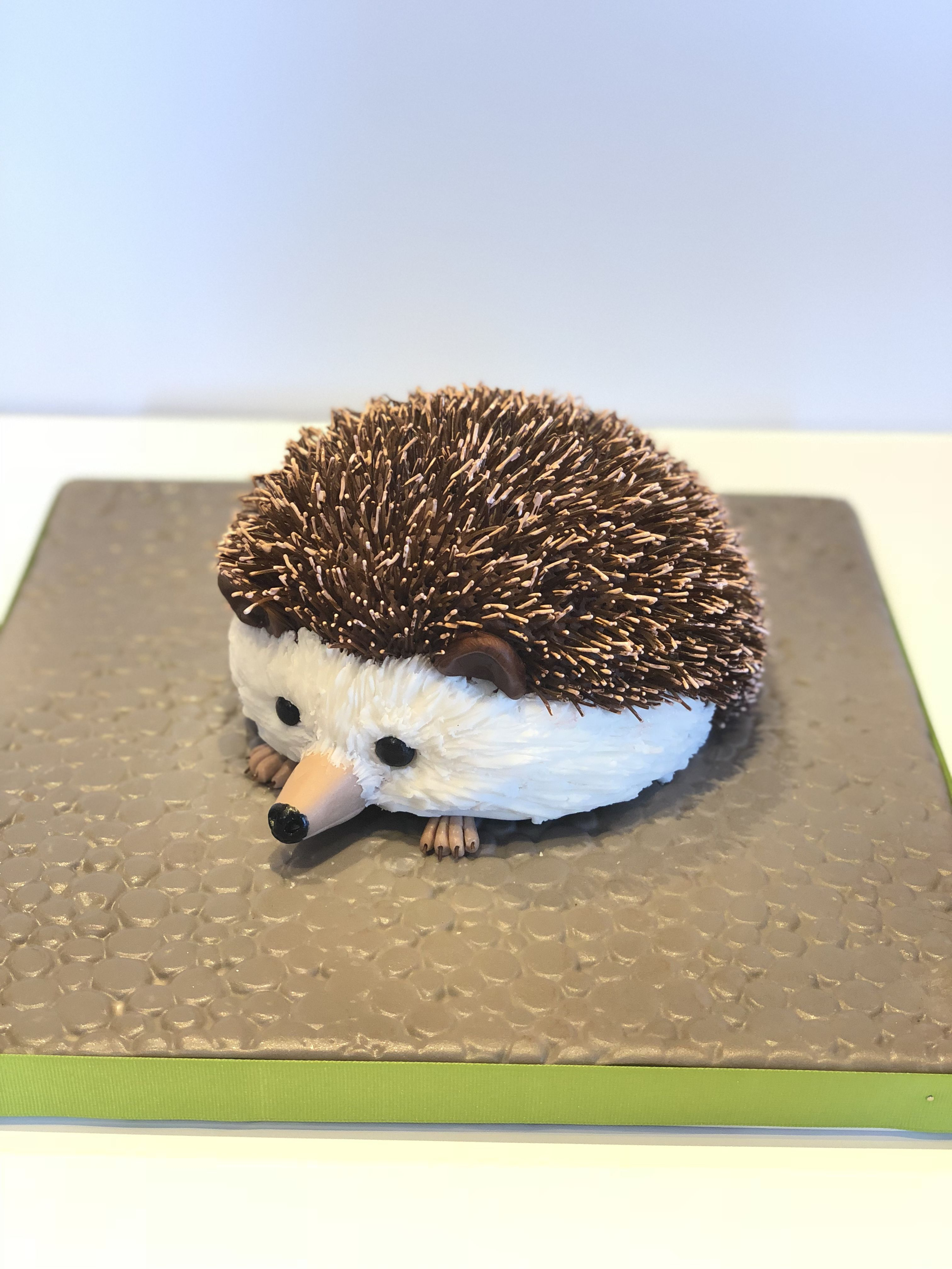 Hedgehog cake with images hedgehog cake zoo cake