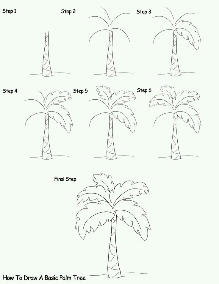 how to draw a basic palm tree how to draw pinterest Coconut Tree Outline how to draw a basic palm tree drawing lessons drawing techniques drawing tips