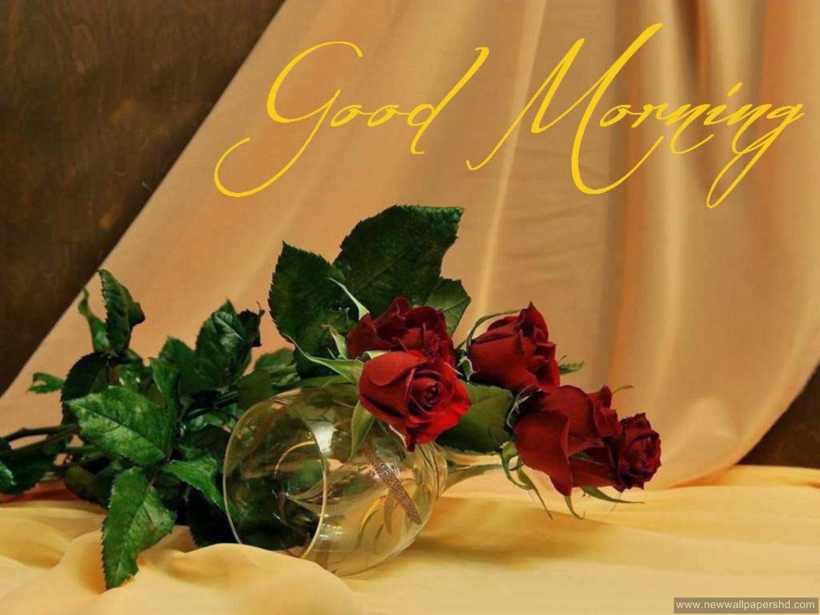 Hd wallpaper of good morning - Good Morning Images Good Morning Pinterest Morning Images And Background Hd Wallpaper