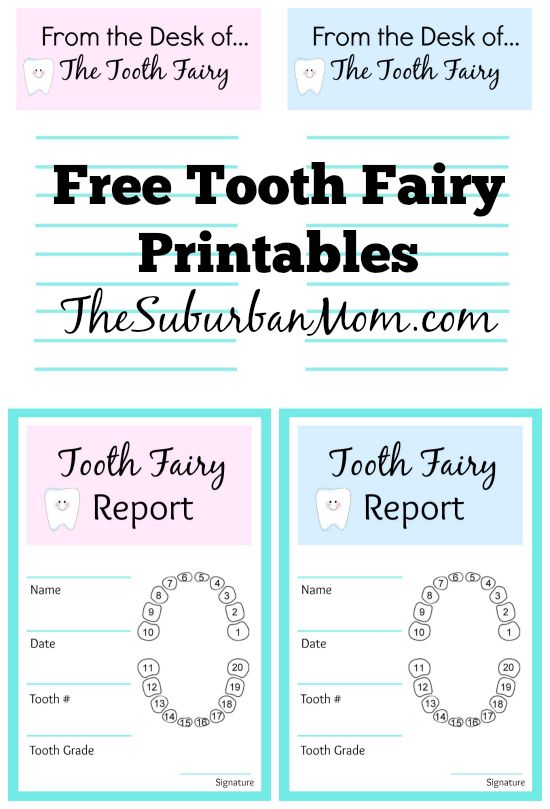 Image From Http Www Thesuburbanmom Com Wp Content Uploads 2014 06 Free Tooth Fairy Printables Png Tooth Fairy Tooth Fairy Letter Tooth Fairy Receipt