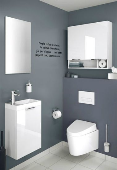 Decoration wc gris et blanc for Toilettes design maison