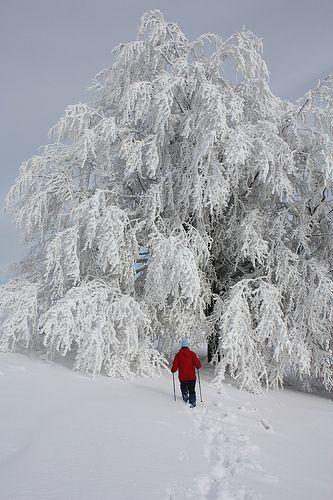 winter trekking | Flickr - Photo Sharing!