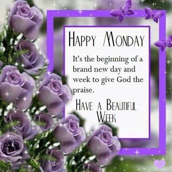 Happy Week Quotes Inspirational: Happy Monday Its A Brand New Week Monday Monday Quotes