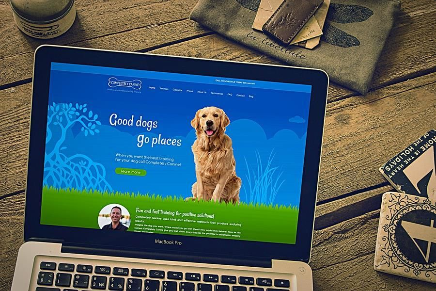 Businesssitedesigner Is Leading Web Design And Web Development Company Of Right Place Of Business G Web Development Design Fun Website Design Web Design Course