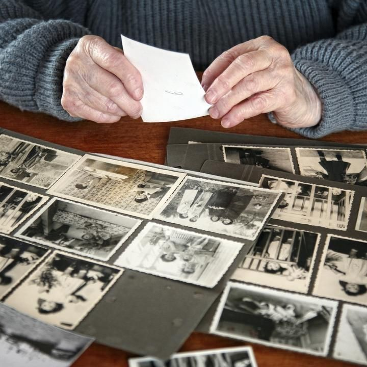 Build a Digital Family Tree With These 5 Tools Family history
