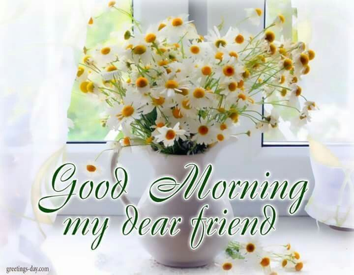 Good Morning My Dear Friend morning good morning morning quotes good morning…  | Good morning dear friend, Good morning flowers, Good morning greetings  images