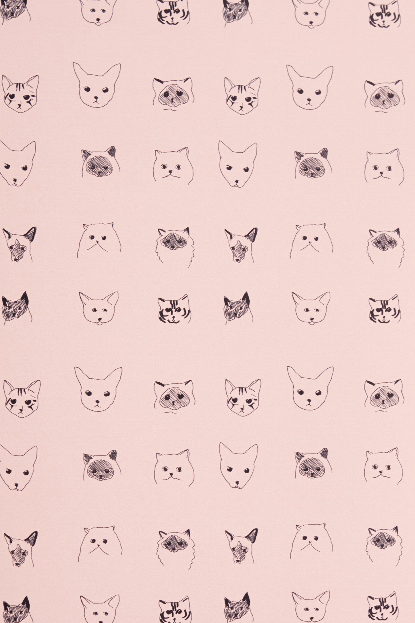 Cats Wallpaper Anthropologie Com Pink In 2019 Cat