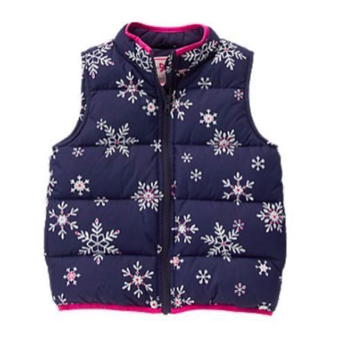 Gymboree Toddler Girl/'s Pullover Pink Paisley Sweatshirt NWT!