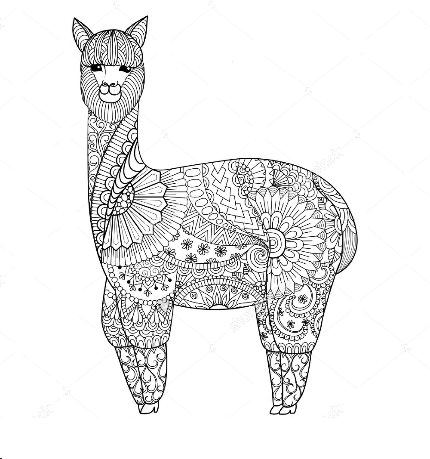 Llama Zentangle Coloring Page