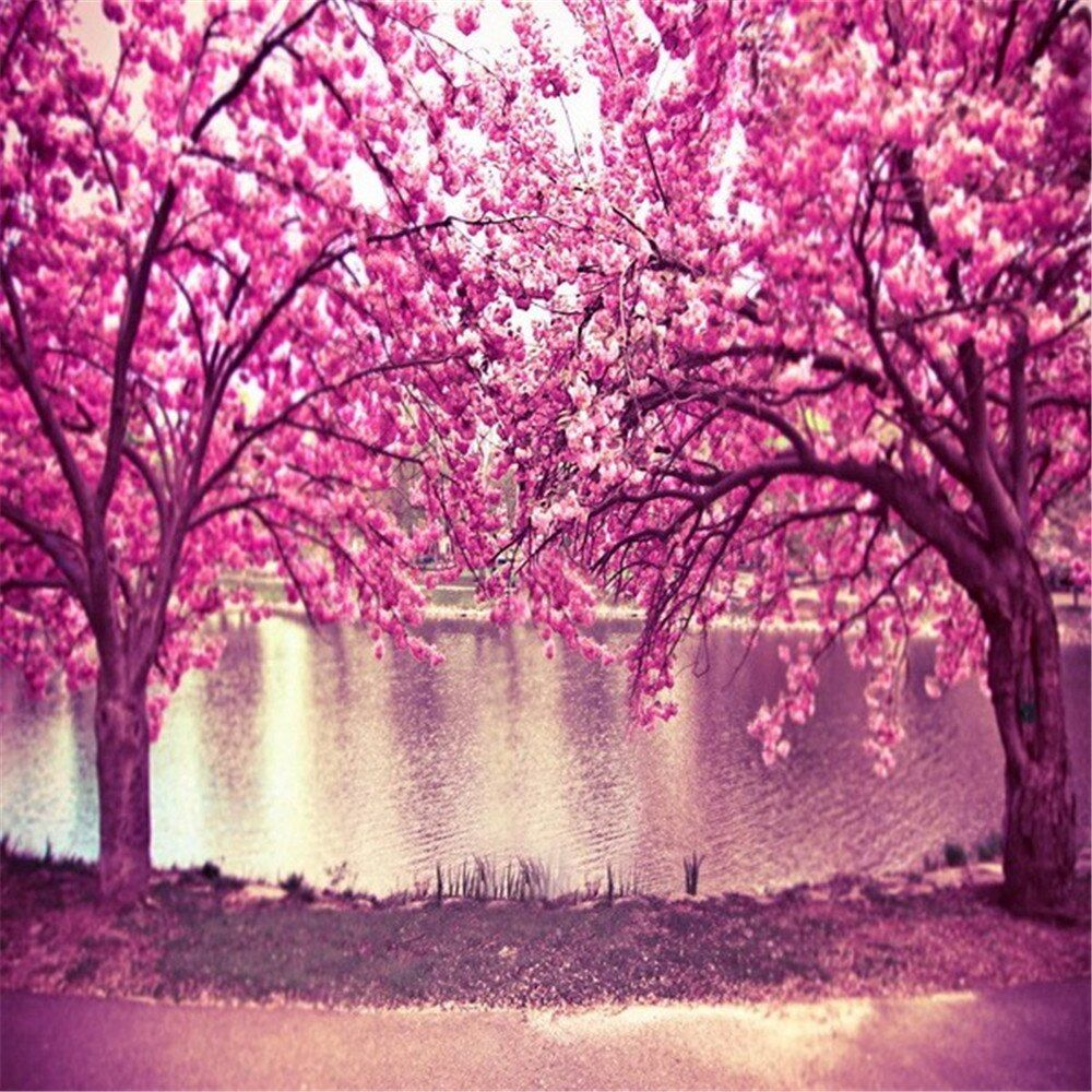Pink Cherry Blossom Trees Backdrops Photography Printed Flowers River Kids Wedding Spring Nature Blossom Tree Wedding Blossom Trees Background For Photography