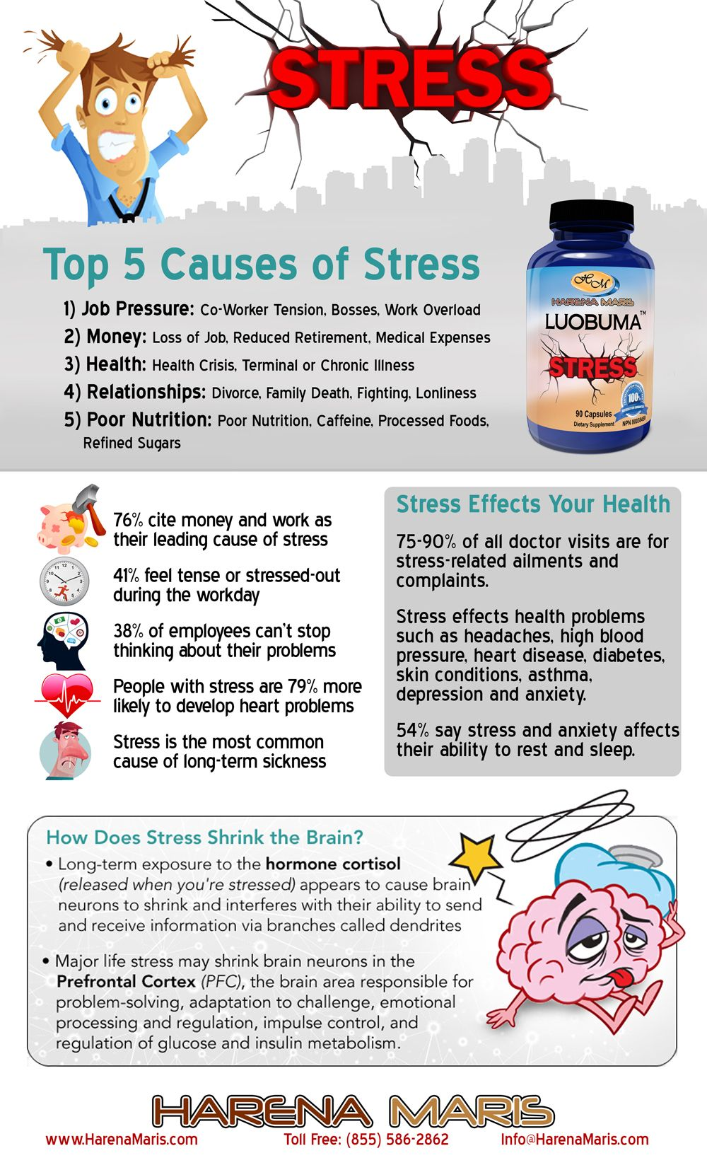 the different causes of stress in high school Stress can affect performance, the way an athlete responds to the stress can affect it, and the management of the stress can negatively or positively affect the athlete's stress level the stress response process (shown below) consists of five stages.