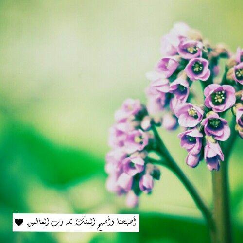 أصبحنا وأصبح الملك لله رب العالمين Islamic Images Image Islam
