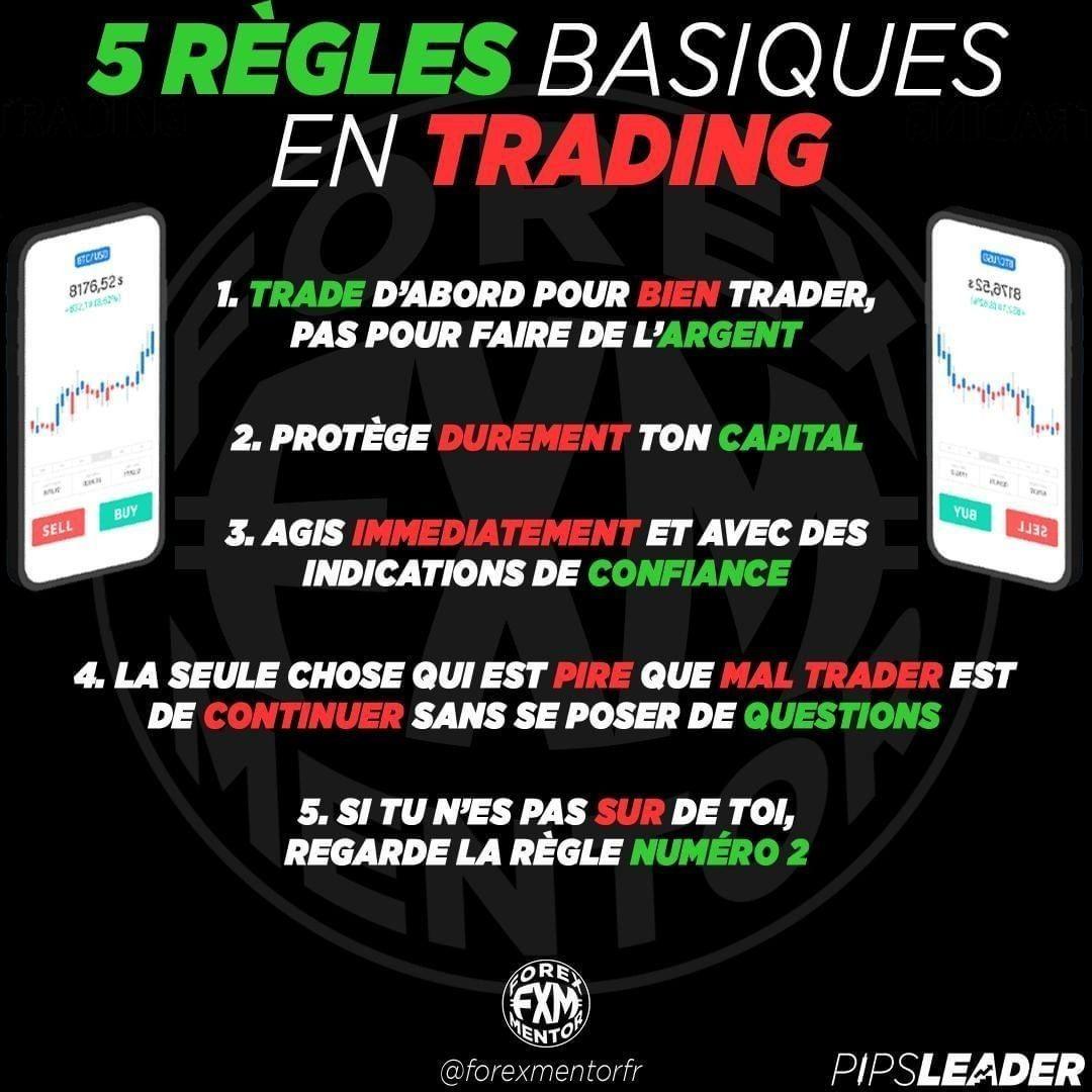 meilleur cours en ligne de trading forex