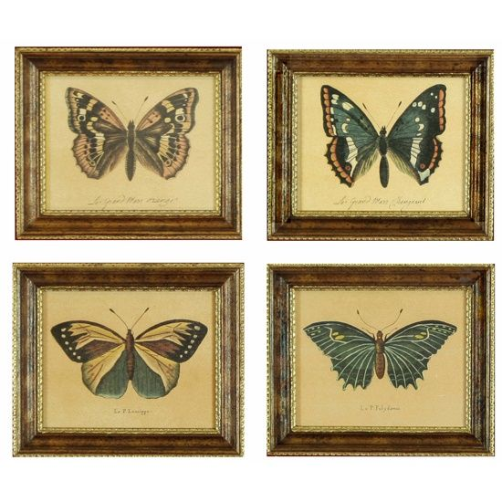 antique framed butterflies cassies bedroom inspiration