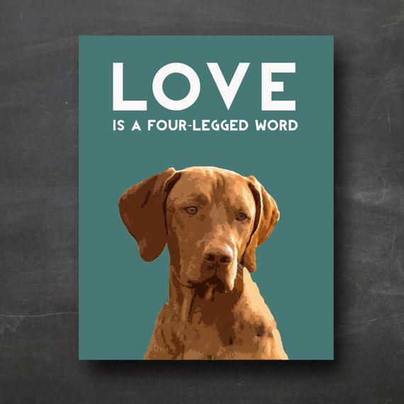 Vizsla Dog Portrait With Quot Love Is A Four Legged Word Quot Quote Vizsla Dogs Vizsla Dog Portraits