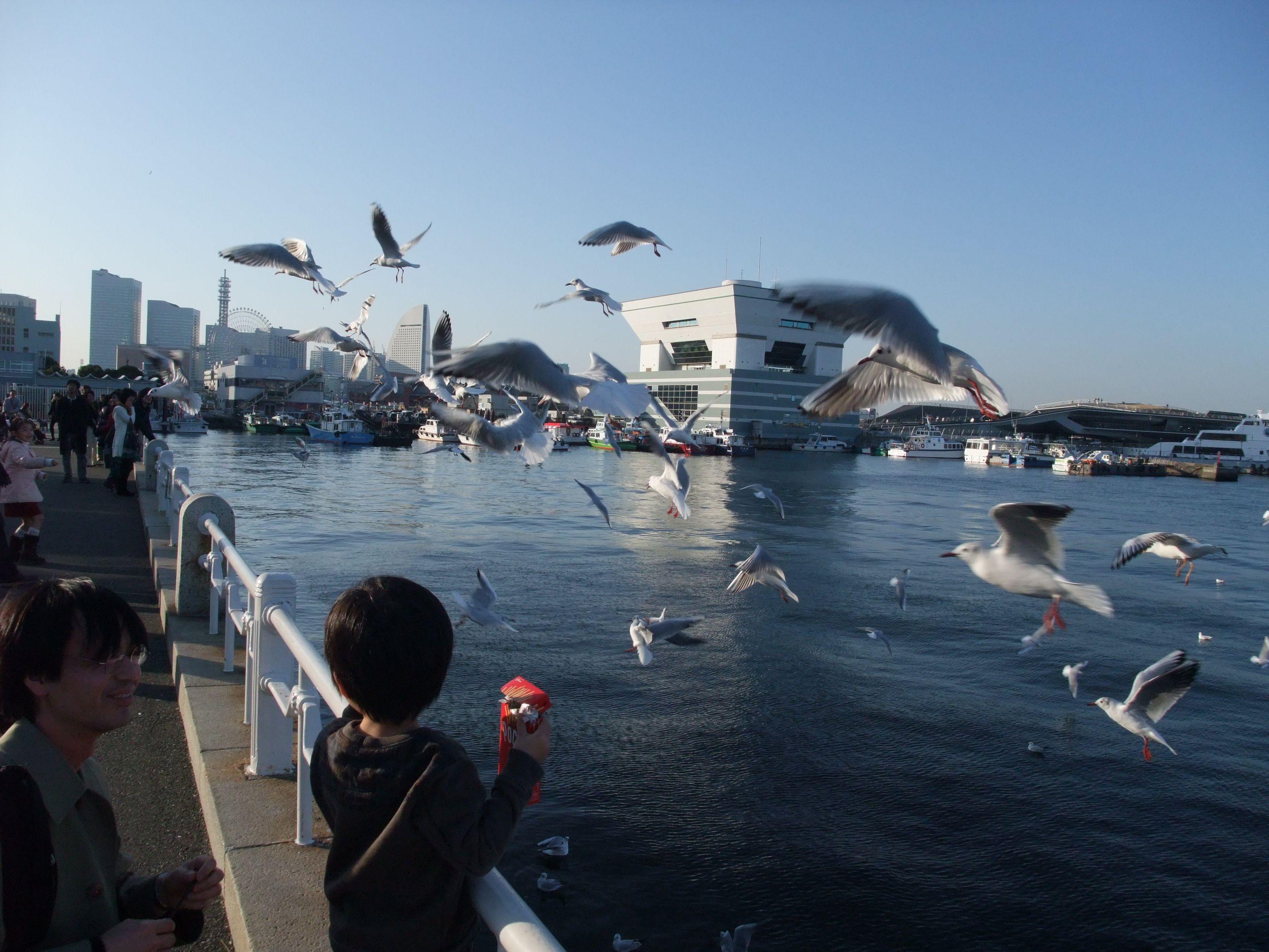 09.03横浜